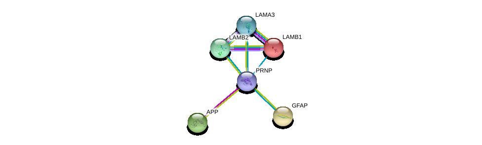 http://string-db.org/version_10/api/image/networkList?limit=0&targetmode=proteins&caller_identity=gene_cards&network_flavor=evidence&identifiers=9606.ENSP00000368752%0d%0a9606.ENSP00000284981%0d%0a9606.ENSP00000324532%0d%0a9606.ENSP00000253408%0d%0a9606.ENSP00000307156%0d%0a9606.ENSP00000222399%0d%0a