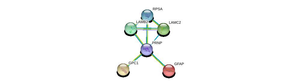 http://string-db.org/version_10/api/image/networkList?limit=0&targetmode=proteins&caller_identity=gene_cards&network_flavor=evidence&identifiers=9606.ENSP00000368752%0d%0a9606.ENSP00000307156%0d%0a9606.ENSP00000264144%0d%0a9606.ENSP00000346067%0d%0a9606.ENSP00000264039%0d%0a9606.ENSP00000253408%0d%0a