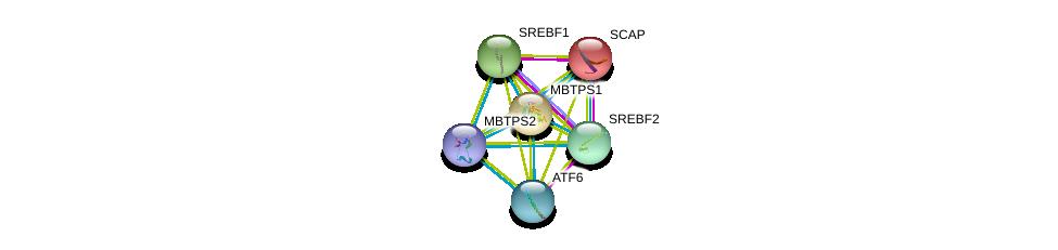http://string-db.org/version_10/api/image/networkList?limit=0&targetmode=proteins&caller_identity=gene_cards&network_flavor=evidence&identifiers=9606.ENSP00000368798%0d%0a9606.ENSP00000344223%0d%0a9606.ENSP00000265565%0d%0a9606.ENSP00000348069%0d%0a9606.ENSP00000356919%0d%0a9606.ENSP00000354476%0d%0a