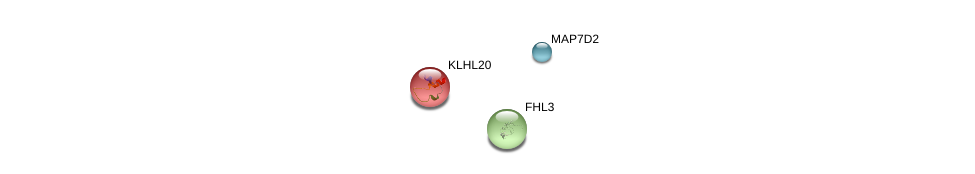 http://string-db.org/version_10/api/image/networkList?limit=0&targetmode=proteins&caller_identity=gene_cards&network_flavor=evidence&identifiers=9606.ENSP00000368964%0d%0a9606.ENSP00000362107%0d%0a9606.ENSP00000209884%0d%0a