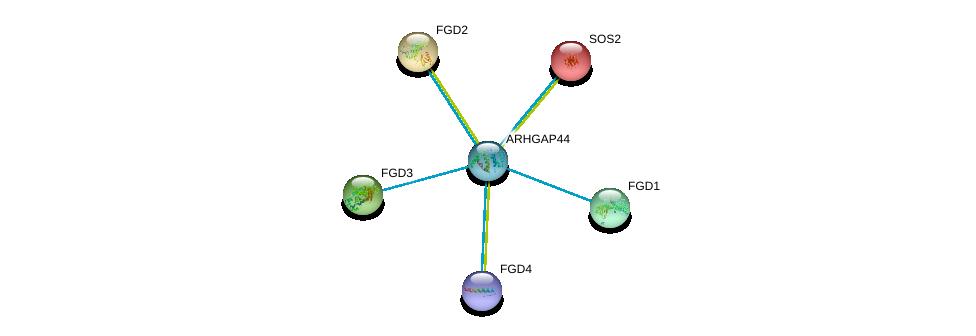 http://string-db.org/version_10/api/image/networkList?limit=0&targetmode=proteins&caller_identity=gene_cards&network_flavor=evidence&identifiers=9606.ENSP00000368994%0d%0a9606.ENSP00000274963%0d%0a9606.ENSP00000336914%0d%0a9606.ENSP00000364277%0d%0a9606.ENSP00000394487%0d%0a9606.ENSP00000216373%0d%0a