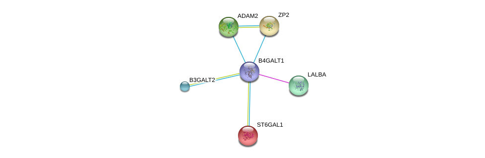 http://string-db.org/version_10/api/image/networkList?limit=0&targetmode=proteins&caller_identity=gene_cards&network_flavor=evidence&identifiers=9606.ENSP00000369055%0d%0a9606.ENSP00000301046%0d%0a9606.ENSP00000265708%0d%0a9606.ENSP00000356404%0d%0a9606.ENSP00000169298%0d%0a9606.ENSP00000219593%0d%0a