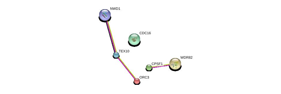 http://string-db.org/version_10/api/image/networkList?limit=0&targetmode=proteins&caller_identity=gene_cards&network_flavor=evidence&identifiers=9606.ENSP00000369136%0d%0a9606.ENSP00000296490%0d%0a9606.ENSP00000364037%0d%0a9606.ENSP00000339353%0d%0a9606.ENSP00000348554%0d%0a9606.ENSP00000257789%0d%0a