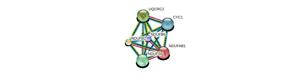 http://string-db.org/version_10/api/image/networkList?limit=0&targetmode=proteins&caller_identity=gene_cards&network_flavor=evidence&identifiers=9606.ENSP00000369176%0d%0a9606.ENSP00000007516%0d%0a9606.ENSP00000274137%0d%0a9606.ENSP00000317159%0d%0a9606.ENSP00000268379%0d%0a9606.ENSP00000247866%0d%0a