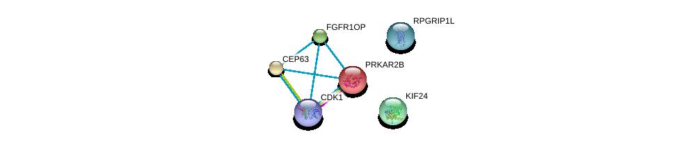 http://string-db.org/version_10/api/image/networkList?limit=0&targetmode=proteins&caller_identity=gene_cards&network_flavor=evidence&identifiers=9606.ENSP00000369257%0d%0a9606.ENSP00000355812%0d%0a9606.ENSP00000336524%0d%0a9606.ENSP00000368464%0d%0a9606.ENSP00000378699%0d%0a9606.ENSP00000265717%0d%0a