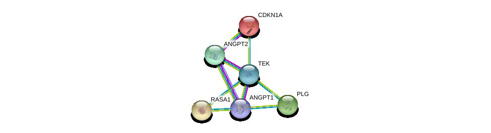 http://string-db.org/version_10/api/image/networkList?limit=0&targetmode=proteins&caller_identity=gene_cards&network_flavor=evidence&identifiers=9606.ENSP00000369375%0d%0a9606.ENSP00000428340%0d%0a9606.ENSP00000314897%0d%0a9606.ENSP00000274376%0d%0a9606.ENSP00000244741%0d%0a9606.ENSP00000308938%0d%0a