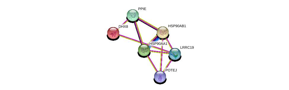http://string-db.org/version_10/api/image/networkList?limit=0&targetmode=proteins&caller_identity=gene_cards&network_flavor=evidence&identifiers=9606.ENSP00000369395%0d%0a9606.ENSP00000262415%0d%0a9606.ENSP00000361918%0d%0a9606.ENSP00000325875%0d%0a9606.ENSP00000335153%0d%0a9606.ENSP00000387176%0d%0a