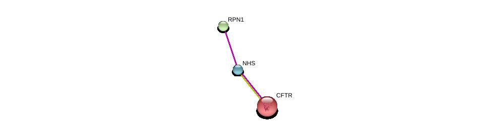 http://string-db.org/version_10/api/image/networkList?limit=0&targetmode=proteins&caller_identity=gene_cards&network_flavor=evidence&identifiers=9606.ENSP00000369400%0d%0a9606.ENSP00000003084%0d%0a9606.ENSP00000296255%0d%0a