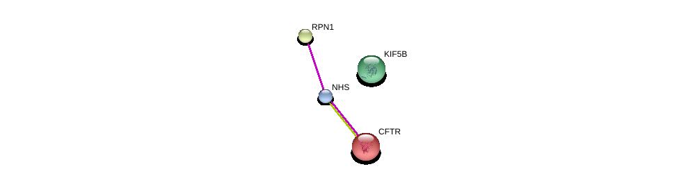 http://string-db.org/version_10/api/image/networkList?limit=0&targetmode=proteins&caller_identity=gene_cards&network_flavor=evidence&identifiers=9606.ENSP00000369400%0d%0a9606.ENSP00000296255%0d%0a9606.ENSP00000003084%0d%0a9606.ENSP00000307078%0d%0a