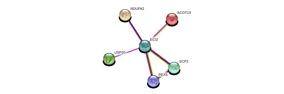 http://string-db.org/version_10/api/image/networkList?limit=0&targetmode=proteins&caller_identity=gene_cards&network_flavor=evidence&identifiers=9606.ENSP00000369461%0d%0a9606.ENSP00000360569%0d%0a9606.ENSP00000313811%0d%0a9606.ENSP00000407401%0d%0a9606.ENSP00000252102%0d%0a9606.ENSP00000230048%0d%0a