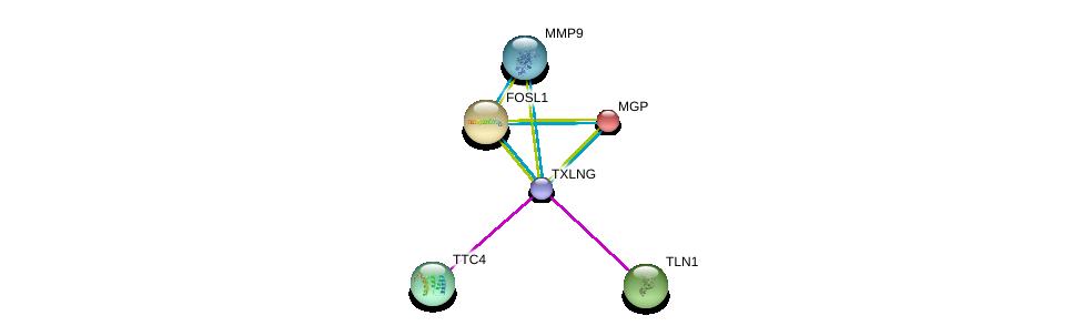 http://string-db.org/version_10/api/image/networkList?limit=0&targetmode=proteins&caller_identity=gene_cards&network_flavor=evidence&identifiers=9606.ENSP00000369465%0d%0a9606.ENSP00000360329%0d%0a9606.ENSP00000316029%0d%0a9606.ENSP00000228938%0d%0a9606.ENSP00000310170%0d%0a9606.ENSP00000361405%0d%0a