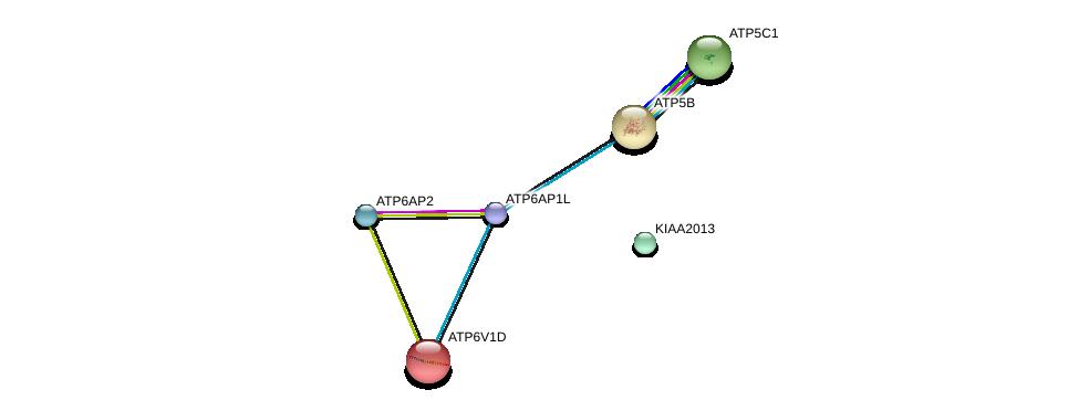 http://string-db.org/version_10/api/image/networkList?limit=0&targetmode=proteins&caller_identity=gene_cards&network_flavor=evidence&identifiers=9606.ENSP00000369513%0d%0a9606.ENSP00000365756%0d%0a9606.ENSP00000367697%0d%0a9606.ENSP00000262030%0d%0a9606.ENSP00000349142%0d%0a9606.ENSP00000216442%0d%0a