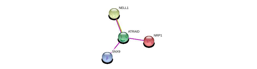 http://string-db.org/version_10/api/image/networkList?limit=0&targetmode=proteins&caller_identity=gene_cards&network_flavor=evidence&identifiers=9606.ENSP00000369518%0d%0a9606.ENSP00000376024%0d%0a9606.ENSP00000349654%0d%0a9606.ENSP00000265371%0d%0a
