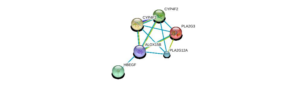 http://string-db.org/version_10/api/image/networkList?limit=0&targetmode=proteins&caller_identity=gene_cards&network_flavor=evidence&identifiers=9606.ENSP00000369530%0d%0a9606.ENSP00000215885%0d%0a9606.ENSP00000221307%0d%0a9606.ENSP00000221700%0d%0a9606.ENSP00000230990%0d%0a9606.ENSP00000243501%0d%0a