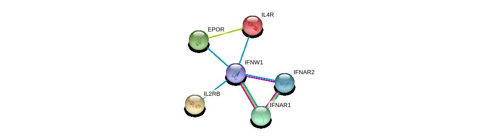 http://string-db.org/version_10/api/image/networkList?limit=0&targetmode=proteins&caller_identity=gene_cards&network_flavor=evidence&identifiers=9606.ENSP00000369578%0d%0a9606.ENSP00000270139%0d%0a9606.ENSP00000343957%0d%0a9606.ENSP00000170630%0d%0a9606.ENSP00000216223%0d%0a9606.ENSP00000222139%0d%0a