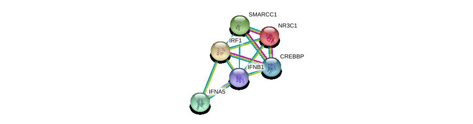 http://string-db.org/version_10/api/image/networkList?limit=0&targetmode=proteins&caller_identity=gene_cards&network_flavor=evidence&identifiers=9606.ENSP00000369581%0d%0a9606.ENSP00000231509%0d%0a9606.ENSP00000245414%0d%0a9606.ENSP00000254480%0d%0a9606.ENSP00000259555%0d%0a9606.ENSP00000262367%0d%0a
