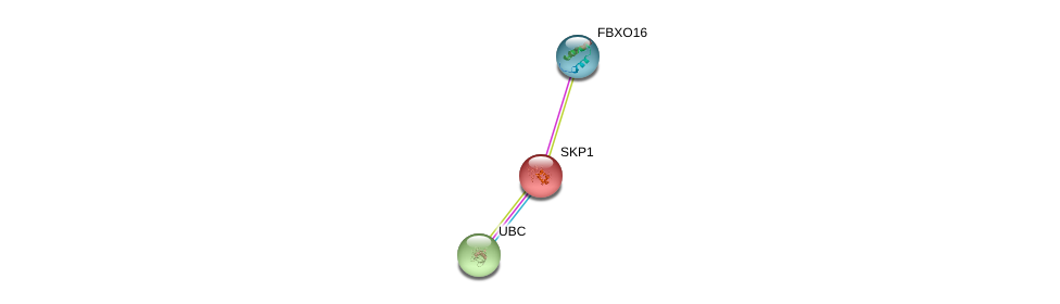 http://string-db.org/version_10/api/image/networkList?limit=0&targetmode=proteins&caller_identity=gene_cards&network_flavor=evidence&identifiers=9606.ENSP00000369604%0d%0a9606.ENSP00000231487%0d%0a9606.ENSP00000344818%0d%0a