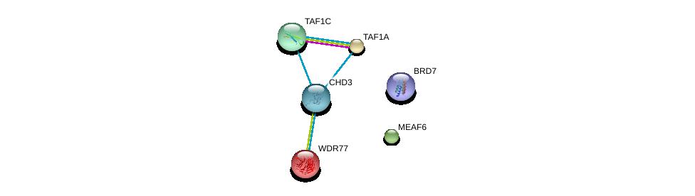 http://string-db.org/version_10/api/image/networkList?limit=0&targetmode=proteins&caller_identity=gene_cards&network_flavor=evidence&identifiers=9606.ENSP00000369716%0d%0a9606.ENSP00000367802%0d%0a9606.ENSP00000235090%0d%0a9606.ENSP00000327072%0d%0a9606.ENSP00000362166%0d%0a9606.ENSP00000378181%0d%0a