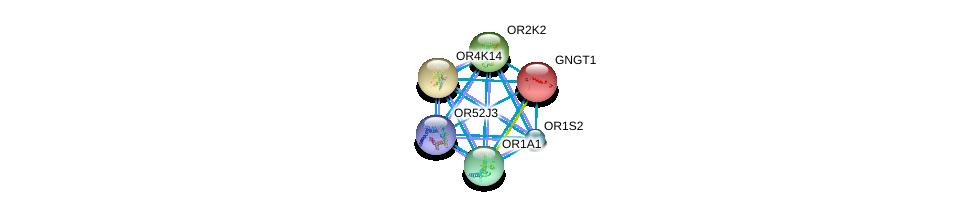 http://string-db.org/version_10/api/image/networkList?limit=0&targetmode=proteins&caller_identity=gene_cards&network_flavor=evidence&identifiers=9606.ENSP00000369728%0d%0a9606.ENSP00000248572%0d%0a9606.ENSP00000305055%0d%0a9606.ENSP00000305207%0d%0a9606.ENSP00000305011%0d%0a9606.ENSP00000305469%0d%0a