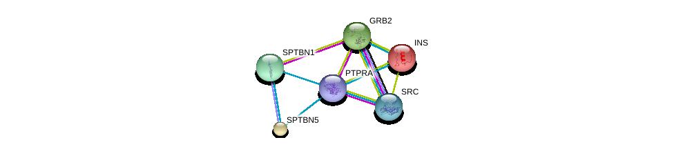 http://string-db.org/version_10/api/image/networkList?limit=0&targetmode=proteins&caller_identity=gene_cards&network_flavor=evidence&identifiers=9606.ENSP00000369756%0d%0a9606.ENSP00000339007%0d%0a9606.ENSP00000350941%0d%0a9606.ENSP00000250971%0d%0a9606.ENSP00000317790%0d%0a9606.ENSP00000349259%0d%0a