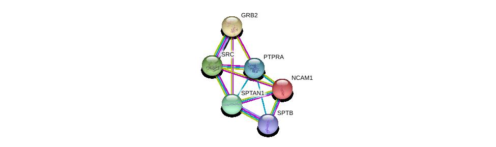 http://string-db.org/version_10/api/image/networkList?limit=0&targetmode=proteins&caller_identity=gene_cards&network_flavor=evidence&identifiers=9606.ENSP00000369756%0d%0a9606.ENSP00000339007%0d%0a9606.ENSP00000350941%0d%0a9606.ENSP00000361824%0d%0a9606.ENSP00000318472%0d%0a9606.ENSP00000374372%0d%0a