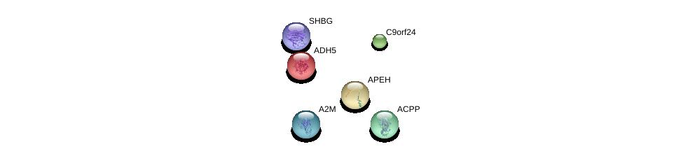 http://string-db.org/version_10/api/image/networkList?limit=0&targetmode=proteins&caller_identity=gene_cards&network_flavor=evidence&identifiers=9606.ENSP00000369816%0d%0a9606.ENSP00000296412%0d%0a9606.ENSP00000296456%0d%0a9606.ENSP00000297623%0d%0a9606.ENSP00000323036%0d%0a9606.ENSP00000323929%0d%0a