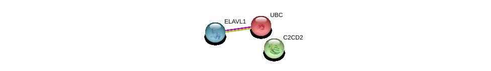 http://string-db.org/version_10/api/image/networkList?limit=0&targetmode=proteins&caller_identity=gene_cards&network_flavor=evidence&identifiers=9606.ENSP00000369853%0d%0a9606.ENSP00000385269%0d%0a9606.ENSP00000344818%0d%0a