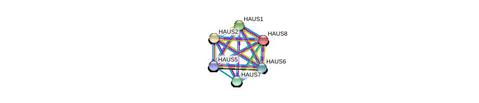 http://string-db.org/version_10/api/image/networkList?limit=0&targetmode=proteins&caller_identity=gene_cards&network_flavor=evidence&identifiers=9606.ENSP00000369871%0d%0a9606.ENSP00000260372%0d%0a9606.ENSP00000282058%0d%0a9606.ENSP00000359239%0d%0a9606.ENSP00000439056%0d%0a9606.ENSP00000253669%0d%0a