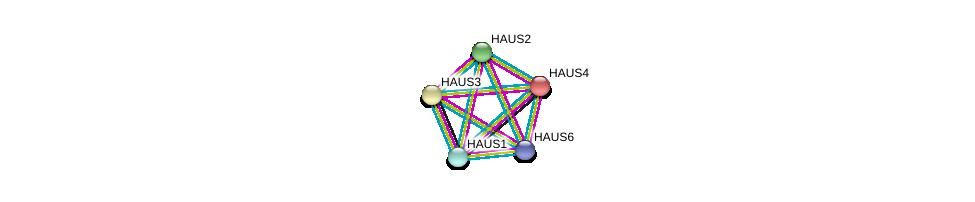 http://string-db.org/version_10/api/image/networkList?limit=0&targetmode=proteins&caller_identity=gene_cards&network_flavor=evidence&identifiers=9606.ENSP00000369871%0d%0a9606.ENSP00000282058%0d%0a9606.ENSP00000260372%0d%0a9606.ENSP00000243706%0d%0a9606.ENSP00000206474%0d%0a9606.ENSP00000206474%0d%0a