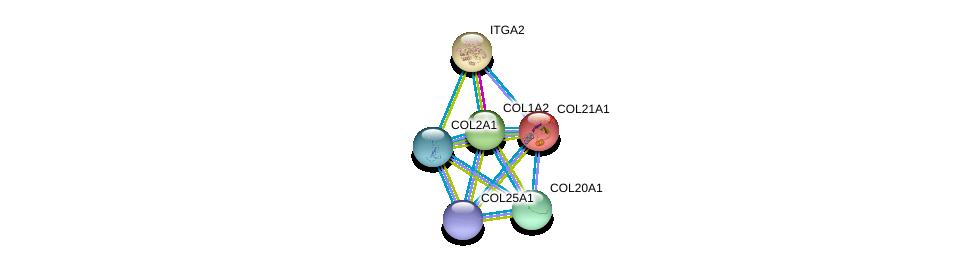 http://string-db.org/version_10/api/image/networkList?limit=0&targetmode=proteins&caller_identity=gene_cards&network_flavor=evidence&identifiers=9606.ENSP00000369889%0d%0a9606.ENSP00000297268%0d%0a9606.ENSP00000244728%0d%0a9606.ENSP00000382083%0d%0a9606.ENSP00000296585%0d%0a9606.ENSP00000351767%0d%0a