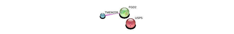 http://string-db.org/version_10/api/image/networkList?limit=0&targetmode=proteins&caller_identity=gene_cards&network_flavor=evidence&identifiers=9606.ENSP00000369959%0d%0a9606.ENSP00000274963%0d%0a9606.ENSP00000229268%0d%0a
