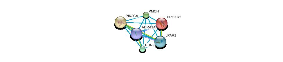 http://string-db.org/version_10/api/image/networkList?limit=0&targetmode=proteins&caller_identity=gene_cards&network_flavor=evidence&identifiers=9606.ENSP00000369960%0d%0a9606.ENSP00000217270%0d%0a9606.ENSP00000351755%0d%0a9606.ENSP00000332225%0d%0a9606.ENSP00000263967%0d%0a9606.ENSP00000337128%0d%0a