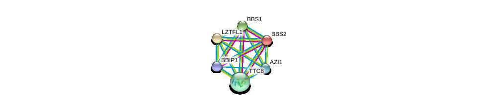 http://string-db.org/version_10/api/image/networkList?limit=0&targetmode=proteins&caller_identity=gene_cards&network_flavor=evidence&identifiers=9606.ENSP00000370031%0d%0a9606.ENSP00000296135%0d%0a9606.ENSP00000393583%0d%0a9606.ENSP00000433157%0d%0a9606.ENSP00000245157%0d%0a9606.ENSP00000317469%0d%0a