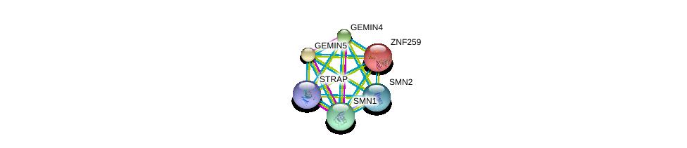 http://string-db.org/version_10/api/image/networkList?limit=0&targetmode=proteins&caller_identity=gene_cards&network_flavor=evidence&identifiers=9606.ENSP00000370119%0d%0a9606.ENSP00000392270%0d%0a9606.ENSP00000370083%0d%0a9606.ENSP00000227322%0d%0a9606.ENSP00000321706%0d%0a9606.ENSP00000285873%0d%0a