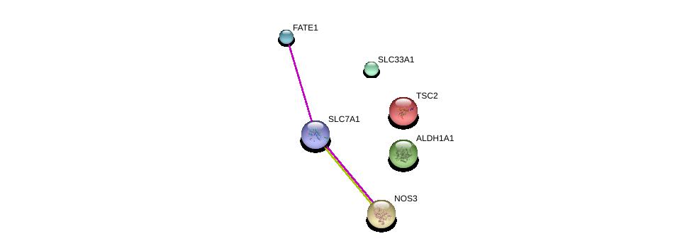 http://string-db.org/version_10/api/image/networkList?limit=0&targetmode=proteins&caller_identity=gene_cards&network_flavor=evidence&identifiers=9606.ENSP00000370128%0d%0a9606.ENSP00000359375%0d%0a9606.ENSP00000352456%0d%0a9606.ENSP00000297494%0d%0a9606.ENSP00000219476%0d%0a9606.ENSP00000297785%0d%0a