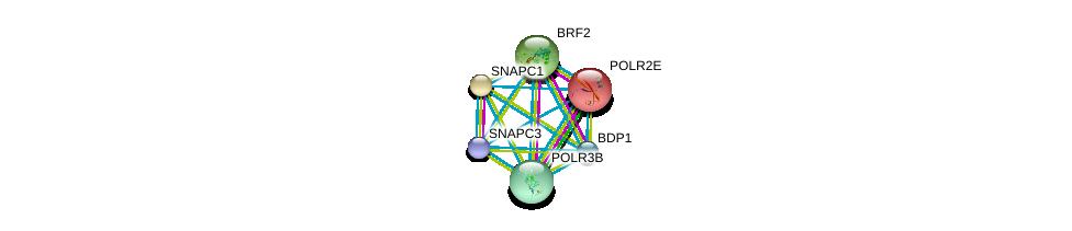 http://string-db.org/version_10/api/image/networkList?limit=0&targetmode=proteins&caller_identity=gene_cards&network_flavor=evidence&identifiers=9606.ENSP00000370200%0d%0a9606.ENSP00000216294%0d%0a9606.ENSP00000351575%0d%0a9606.ENSP00000215587%0d%0a9606.ENSP00000220659%0d%0a9606.ENSP00000228347%0d%0a