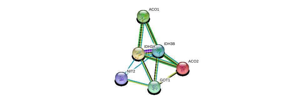 http://string-db.org/version_10/api/image/networkList?limit=0&targetmode=proteins&caller_identity=gene_cards&network_flavor=evidence&identifiers=9606.ENSP00000370223%0d%0a9606.ENSP00000299518%0d%0a9606.ENSP00000309477%0d%0a9606.ENSP00000216254%0d%0a9606.ENSP00000377696%0d%0a9606.ENSP00000359539%0d%0a