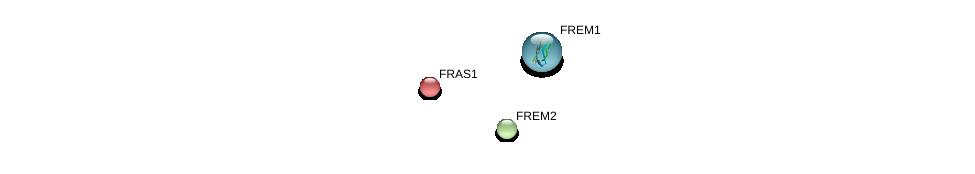 http://string-db.org/version_10/api/image/networkList?limit=0&targetmode=proteins&caller_identity=gene_cards&network_flavor=evidence&identifiers=9606.ENSP00000370262%0d%0a9606.ENSP00000280481%0d%0a9606.ENSP00000264895%0d%0a