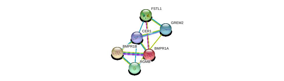 http://string-db.org/version_10/api/image/networkList?limit=0&targetmode=proteins&caller_identity=gene_cards&network_flavor=evidence&identifiers=9606.ENSP00000370297%0d%0a9606.ENSP00000224764%0d%0a9606.ENSP00000264568%0d%0a9606.ENSP00000295633%0d%0a9606.ENSP00000308219%0d%0a9606.ENSP00000318650%0d%0a