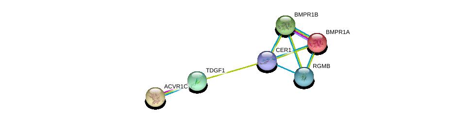 http://string-db.org/version_10/api/image/networkList?limit=0&targetmode=proteins&caller_identity=gene_cards&network_flavor=evidence&identifiers=9606.ENSP00000370297%0d%0a9606.ENSP00000296145%0d%0a9606.ENSP00000243349%0d%0a9606.ENSP00000308219%0d%0a9606.ENSP00000224764%0d%0a9606.ENSP00000264568%0d%0a