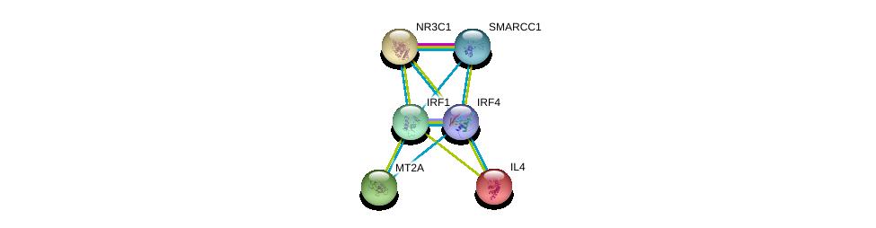 http://string-db.org/version_10/api/image/networkList?limit=0&targetmode=proteins&caller_identity=gene_cards&network_flavor=evidence&identifiers=9606.ENSP00000370343%0d%0a9606.ENSP00000231449%0d%0a9606.ENSP00000231509%0d%0a9606.ENSP00000245185%0d%0a9606.ENSP00000245414%0d%0a9606.ENSP00000254480%0d%0a