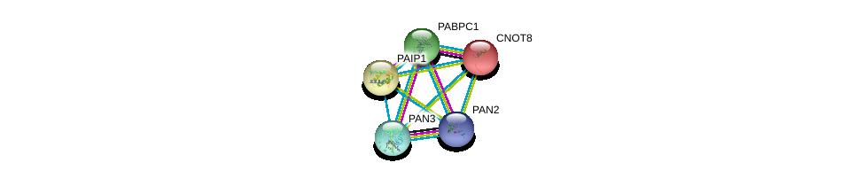 http://string-db.org/version_10/api/image/networkList?limit=0&targetmode=proteins&caller_identity=gene_cards&network_flavor=evidence&identifiers=9606.ENSP00000370345%0d%0a9606.ENSP00000401721%0d%0a9606.ENSP00000313007%0d%0a9606.ENSP00000313007%0d%0a9606.ENSP00000302768%0d%0a9606.ENSP00000285896%0d%0a