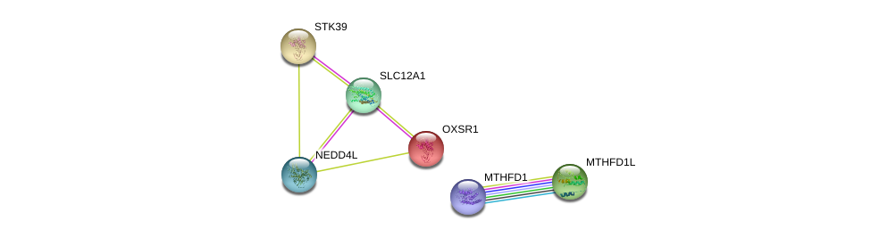 http://string-db.org/version_10/api/image/networkList?limit=0&targetmode=proteins&caller_identity=gene_cards&network_flavor=evidence&identifiers=9606.ENSP00000370381%0d%0a9606.ENSP00000348278%0d%0a9606.ENSP00000311713%0d%0a9606.ENSP00000450560%0d%0a9606.ENSP00000356290%0d%0a9606.ENSP00000383199%0d%0a