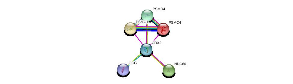 http://string-db.org/version_10/api/image/networkList?limit=0&targetmode=proteins&caller_identity=gene_cards&network_flavor=evidence&identifiers=9606.ENSP00000370408%0d%0a9606.ENSP00000387662%0d%0a9606.ENSP00000261597%0d%0a9606.ENSP00000261303%0d%0a9606.ENSP00000357879%0d%0a9606.ENSP00000157812%0d%0a