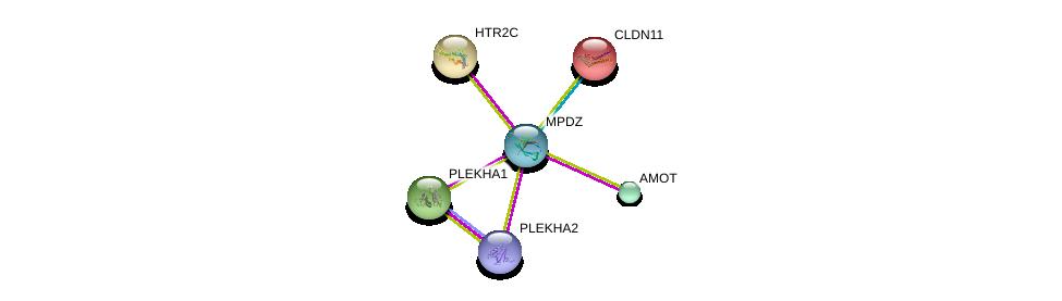 http://string-db.org/version_10/api/image/networkList?limit=0&targetmode=proteins&caller_identity=gene_cards&network_flavor=evidence&identifiers=9606.ENSP00000370410%0d%0a9606.ENSP00000361027%0d%0a9606.ENSP00000276198%0d%0a9606.ENSP00000357986%0d%0a9606.ENSP00000393860%0d%0a9606.ENSP00000064724%0d%0a