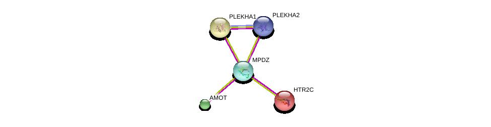 http://string-db.org/version_10/api/image/networkList?limit=0&targetmode=proteins&caller_identity=gene_cards&network_flavor=evidence&identifiers=9606.ENSP00000370410%0d%0a9606.ENSP00000361027%0d%0a9606.ENSP00000361027%0d%0a9606.ENSP00000276198%0d%0a9606.ENSP00000393860%0d%0a9606.ENSP00000357986%0d%0a
