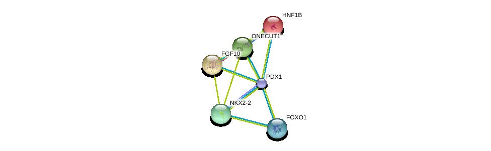 http://string-db.org/version_10/api/image/networkList?limit=0&targetmode=proteins&caller_identity=gene_cards&network_flavor=evidence&identifiers=9606.ENSP00000370421%0d%0a9606.ENSP00000264664%0d%0a9606.ENSP00000225893%0d%0a9606.ENSP00000368880%0d%0a9606.ENSP00000302630%0d%0a9606.ENSP00000366347%0d%0a