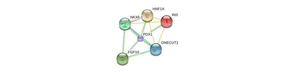 http://string-db.org/version_10/api/image/networkList?limit=0&targetmode=proteins&caller_identity=gene_cards&network_flavor=evidence&identifiers=9606.ENSP00000370421%0d%0a9606.ENSP00000264664%0d%0a9606.ENSP00000257555%0d%0a9606.ENSP00000295886%0d%0a9606.ENSP00000302630%0d%0a9606.ENSP00000250971%0d%0a
