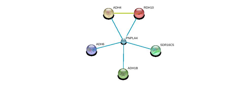 http://string-db.org/version_10/api/image/networkList?limit=0&targetmode=proteins&caller_identity=gene_cards&network_flavor=evidence&identifiers=9606.ENSP00000370430%0d%0a9606.ENSP00000378359%0d%0a9606.ENSP00000307607%0d%0a9606.ENSP00000240285%0d%0a9606.ENSP00000306606%0d%0a9606.ENSP00000265512%0d%0a