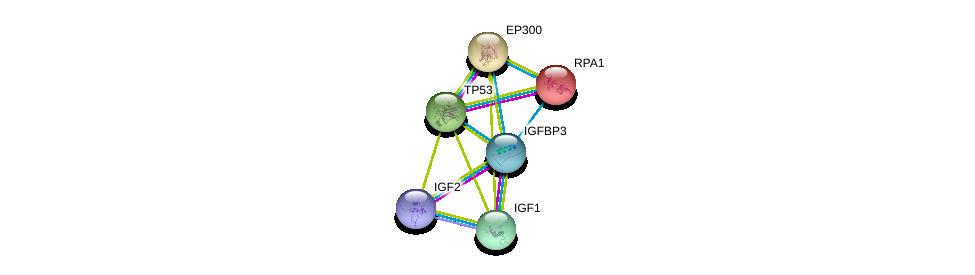 http://string-db.org/version_10/api/image/networkList?limit=0&targetmode=proteins&caller_identity=gene_cards&network_flavor=evidence&identifiers=9606.ENSP00000370473%0d%0a9606.ENSP00000302665%0d%0a9606.ENSP00000391826%0d%0a9606.ENSP00000254719%0d%0a9606.ENSP00000263253%0d%0a9606.ENSP00000269305%0d%0a